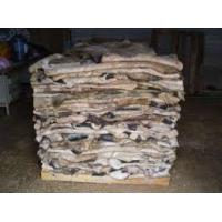 Buy cheap Wet Salted Cow Skin, Cow Heads And Animal Skins, Wet Blue Cow Hides for sale from wholesalers
