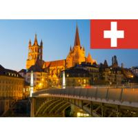 China Professional World Business Service IT Companies In Switzerland on sale