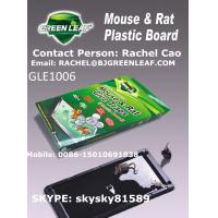 Buy cheap plastic board Mouse Killer / Roach Traps (Glue trap)  Mobile: 0086-15010691838 from wholesalers
