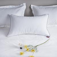 Buy cheap Polyester Microfiber Filling Hotel Quality Pillows , Hotel Luxury Collection Pillows White from wholesalers