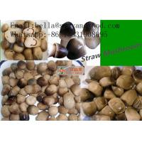 Buy cheap Canned Strawmushroom Canned Mushroom Canned Food from wholesalers