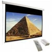 Buy cheap Projector screen/projection screen from wholesalers