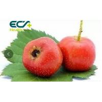 Buy cheap Hawthorn Fruit Extract Skin Care Supplements Reduces Anxiety Ncreases Energy from wholesalers