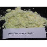 Buy cheap CAS 10161-33-8 Tren E Steroid Bodybuilding Supplements Steroids Yellow Powder from wholesalers