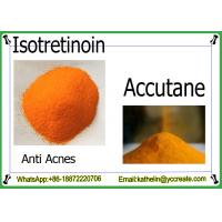 Buy cheap Anti Acnes Powder  Accutane / Isotretinoin / 13-Cis Retinoic Acid : 4759-48-2 from wholesalers