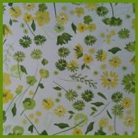 Buy cheap Freshness spring style printed flower table decration cloth made by BSCI audit supplier from Wholesalers