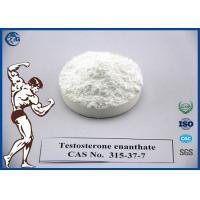 SGS Raw Powder Steroids 315 37 7 Testosterone Enanthate Powder / Oil