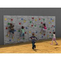 Buy cheap 5 - 12 Years Old Kids Climbing Wall Outdoor With Plastic Slide from wholesalers