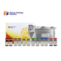 China GABA-B Gamma Aminobutyric Acid B ELISA Kit 96 Wells / 48 Wells 1.05μG/Dl Sensitivity on sale