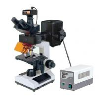 Buy cheap 9.0MP Digital Camera Laboratory Epi Fluorescent Microscope in Oncology Hematology/ Cheap priceEpi fluorescent microscopy from wholesalers