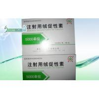 Buy cheap hcg injections,wholesale hcg,hcg supplies,real hcg from wholesalers