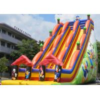 Buy cheap Backyard Dry and Wet Slides With Silk - Screen Printing  / Inflatable Pool Slide from wholesalers