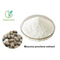 China Good Performance Mucuna Pruriens Extract Powder 98% L- Dopa Non - Irradiated on sale