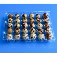 Buy cheap Disposable plastic quail egg tray 30 holes quail egg tray plastic egg tray for product