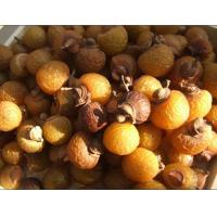 Buy cheap High quality Soapberry Extract,Soapnut extract, Soap Nut Extract, Soapnut Saponin, Sapindus Extract, Soapnuts Extract from wholesalers