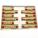 Buy cheap Dental Materials Multi Layer Synthetic Dental Resin Dentures Teeth FDA from wholesalers