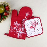 Buy cheap Christmas Theme Highly Recommend Kitchen Cooking Pot Holder and Oven Mitten Glove product