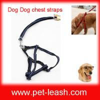Buy cheap Fashion cloth pet leash Chest straps and traction on the rope QT-0076 from wholesalers