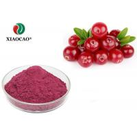 Buy cheap Health Organic Herbal Extracts Cranberry Fruit Juice Concentrate Powder product