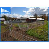 Buy cheap Galvanized Pipe Wire Cattle Panels , Temporary Horse Fence For All Livestock from wholesalers
