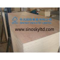 Buy cheap plywood,film face plywood,birch plywood,poplar,poplar plywood,hardwood plywood,china from wholesalers