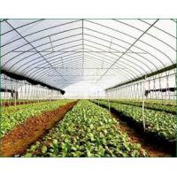 Buy cheap Economical Tunnel Greenhouse from wholesalers