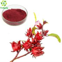 Buy cheap Ruselle Extract / Hibiscus Sabdariffa / Rose Eggplant Powder rose eggplant ruselle anthocyanins extract powder from wholesalers