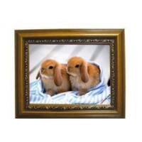 Buy cheap 12.1 Wooden Digital Photo Frame from wholesalers