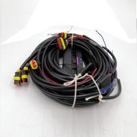 China CNG ECU wire harness, Switch,sensor,lpg cng conversion kits ecu with wiring harness on sale