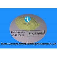 Buy cheap Highly Effective  White Powder Trenbolone Enanthate for Muscle Building  10161-33-8 from wholesalers