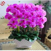 Buy cheap Artificial Faux Home Decor PU Material Best Quality Orchid Bonsai DIY Orchid from wholesalers