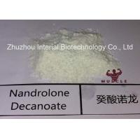 Buy cheap Injectable Nandrolone Decanoate Steroid White Powder Deca for Muscle Gaining with Safe Shipping from wholesalers