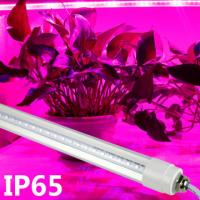 Buy cheap Professional Blue / Red LED Tube Grow Lights For Plant Growth , 18W Power product