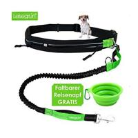 Buy cheap Wholesale Prices Pet Accessories Reflective Night Safety Bungee nylon leash with waist belt pouch from wholesalers