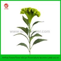 """Buy cheap 32"""" Decorative Artificial Flower Cockscomb Green from wholesalers"""