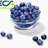 Buy cheap Herbal Skin Care Supplements Organic Freeze Dried Blueberry Powder Prevent Cancer from wholesalers