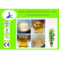 Buy cheap Trenbolone Enanthate Muscle Building Steroids Raw Steroid Powders 10161-33-8 product