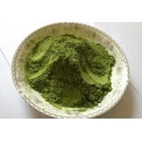 Buy cheap 50:1 Barley Grass Juice Powder for Food Health Less Fiber Higher Nutrition from wholesalers