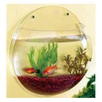 Buy cheap Custom Acrylic Fish Tank , Plexiglass Wall Hanging Fish Tanks product