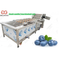 China Automatic Fruit Blueberry Washing Machine Price on sale
