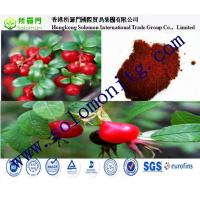 Buy cheap 5% Vitamin C Brown-red fine powder Rose Hips Extract --Rosa rugosa Thunb. from wholesalers