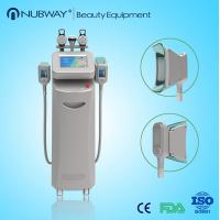 Buy cheap Peltier cooling cryolipolysis fat freeze liposculpture body slimming machine for sale from wholesalers