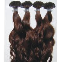 Buy cheap Quality Prebonded Nail tip /U Tip Hair Extensions 12inch to 24inch Free Shipping from wholesalers