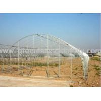 Buy cheap 6m Wide Tomato Greenhouse from wholesalers