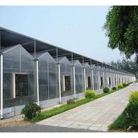 Buy cheap Snow Resistance PC Sheet Greenhouse Gutter Height 3.0-6.0m For Plant Vegetable from wholesalers