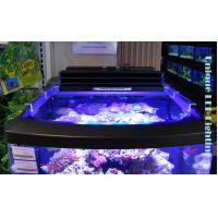 Buy cheap programmable LED aquarium light from wholesalers