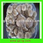 Buy cheap Brown Shimejii mushroom from wholesalers