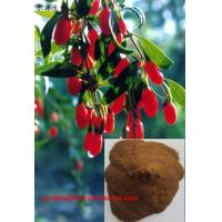 Buy cheap Goji berry extract(Chinese Wolfberry Extracts) from wholesalers