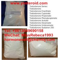 nandrolone for cats