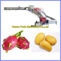 China Fruit Cleaning, Waxing, Drying and Grading Production Line on sale